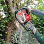 Tree Felling Gloucestershire