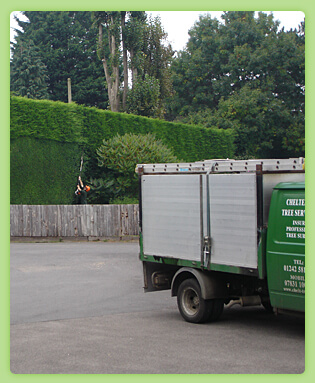 Hedge Maintenance Cheltenham