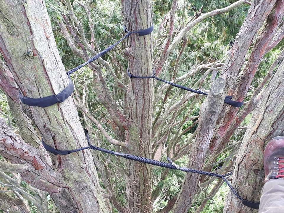 Cable Bracing