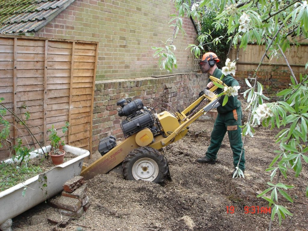 removing stump from garden