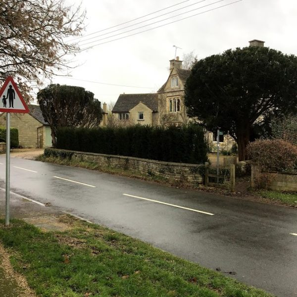 hedge alongside road
