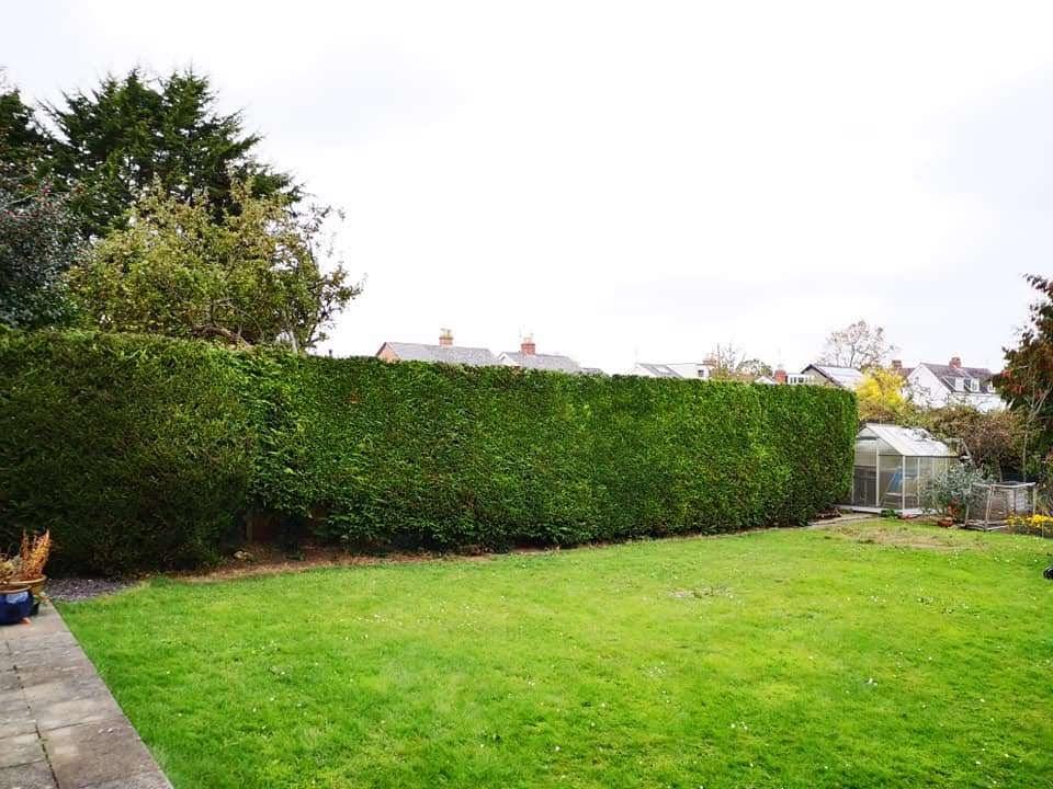 After-Hedges